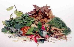 Dagenham-garden-waste-removal